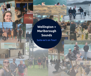 Marlborough Sounds Collage